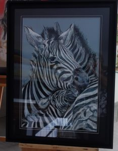 zebres 65x85