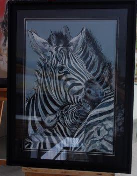 zebres 65×85