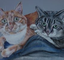 Manga et Jasmine, chats de Julie Cauchois 24x30