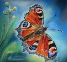 papillon paon de jour pastel 40x40 site