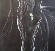 cheval noir pastel acryl sur toile VENDU70x50aout19.jpg1