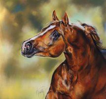 cheval -pastel card - 80x80